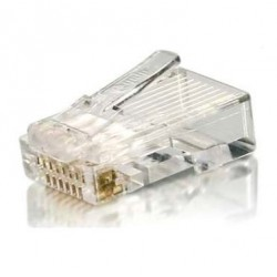 Conector Plug Cat. 6